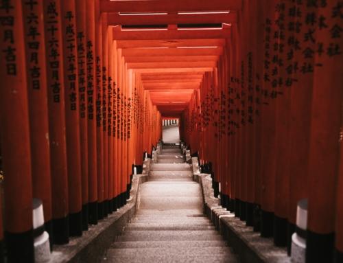 Japon – du 29 février au 6 mars 2020